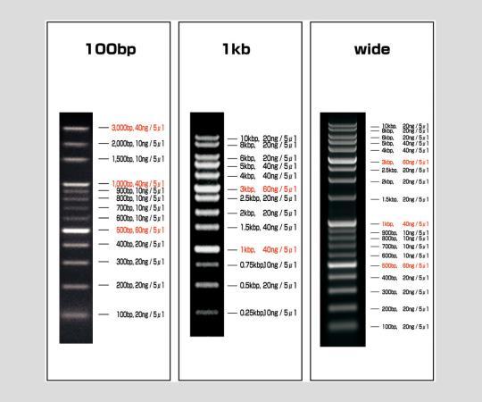 2-9883-01 DNAラダーマーカー VIO-100-5 アズワン(AS ONE)