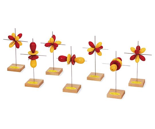 電子軌道模型 f軌道模型(7個)