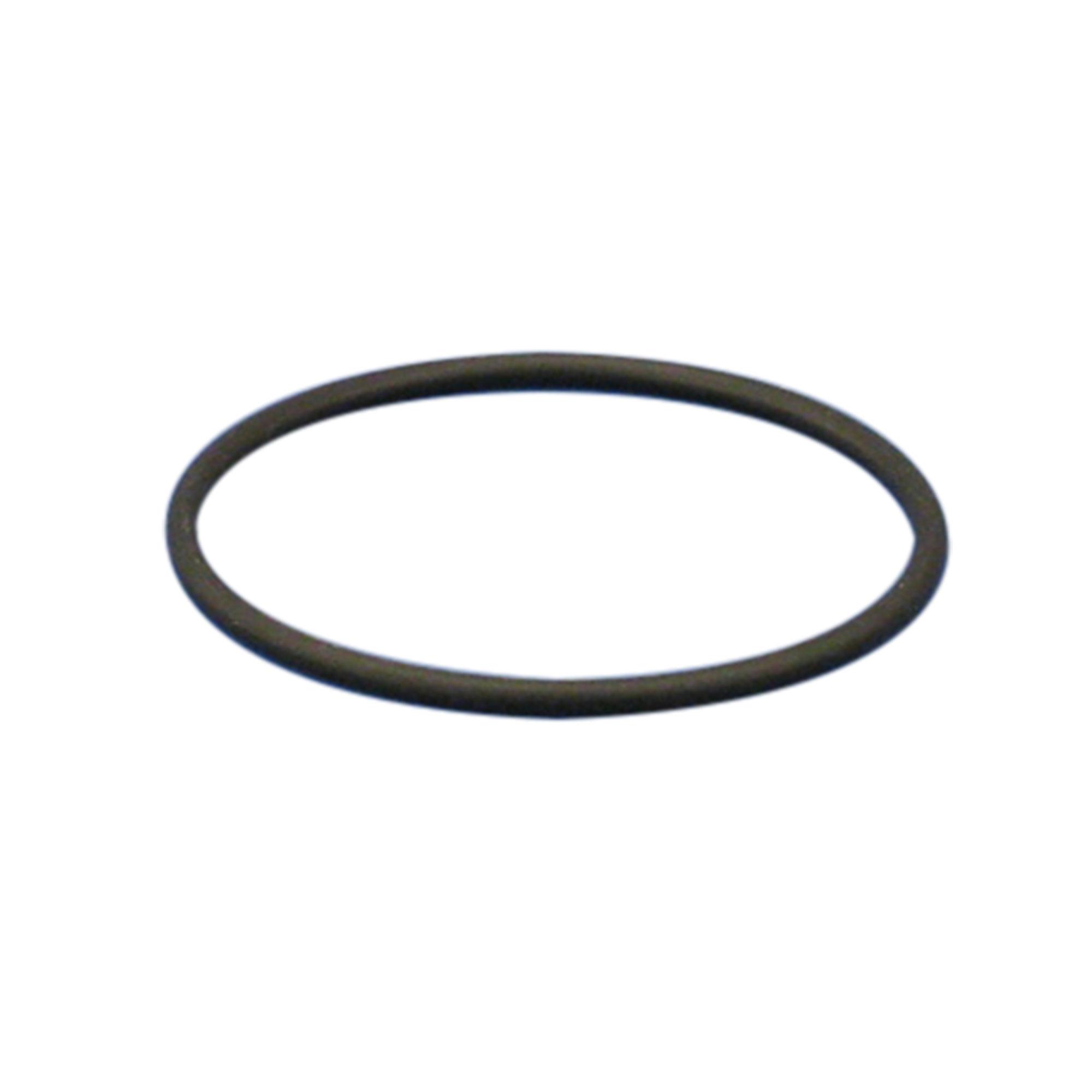 054330-3400 Oリング パーフロ CP-300型用 φ116 柴田科学(SIBATA)